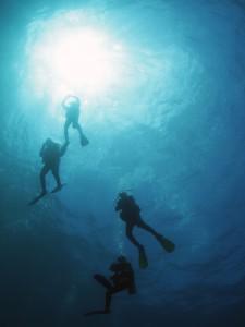 Diving in Padang, Bali
