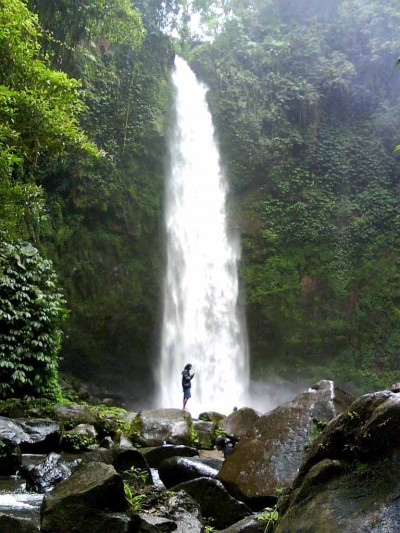 Image Result For Bali Tourism Board Tourist Facilities Bali Travel Agents